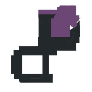 Logo-Dit-Pracht