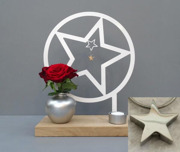 Herinneringhouder ster met assieraad