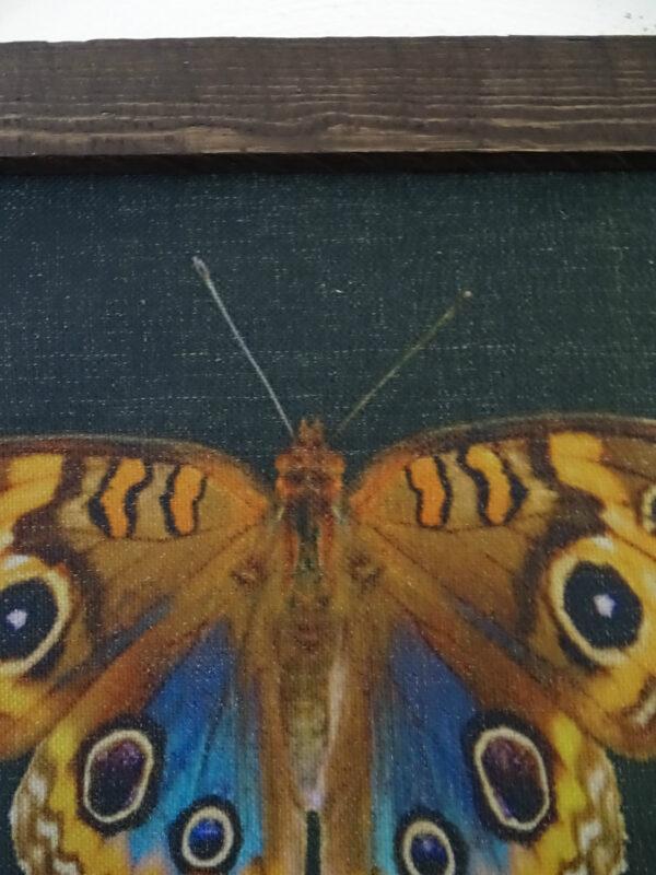 Wandkleed vlinder detail